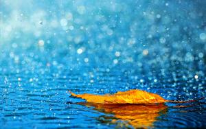 rainy-rain-2115930